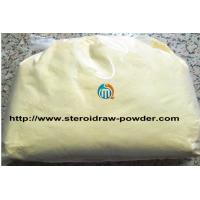 Wholesale Prohormones Powder 7-Keto-Dehydroepiandrosterone / 7-Keto-DHEA for Muscle Building 566-19-8 from china suppliers
