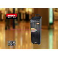 Wholesale Double 10 Inch Rechargeable Trolley Speaker For Outdoor Party And Dancing from china suppliers
