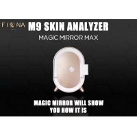 Wholesale ISO13485 UV PL Light 3d Skin Analyzer With Ipad from china suppliers