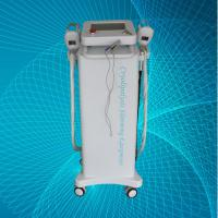 Wholesale Fat Freezing Cryolipolysis Slimming Machine , 2 Inch Handle Screen Beauty Equipment from china suppliers