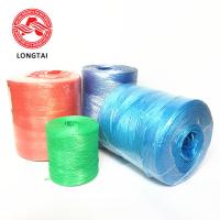 Wholesale Agriculture PP Tomato Tying Rope UV Treated  For  Greenhouse Tomato  Cucumber Chile from china suppliers