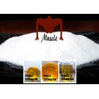 Wholesale Hot Bulking Cycle Bodybuilding Anabolic Steroid Powder 99% Trenbolone Acetate from china suppliers