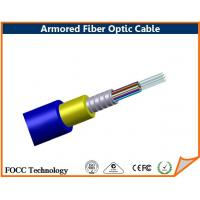 Wholesale Direct Burial Armored Multimode Fiber Optic Cable With Terminated Connector from china suppliers