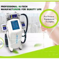 Wholesale Cool Shaping Cryolipolysis Fat Freezing Machine Multi Language Floor Standing from china suppliers
