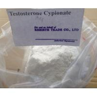 Quality CAS 58-20-8 Test Cyp Raw Testosterone Powder / Testosterone Cypionate 99% High Purity for sale