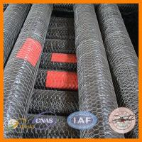 Buy cheap Hot sale!!! Hexagonal chicken mesh (Factory low price) from wholesalers