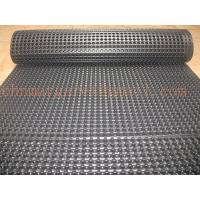 Wholesale Plastic drainage board from china suppliers