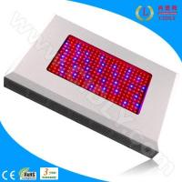 Wholesale 600W LED Grow Light Ratiotailored from china suppliers