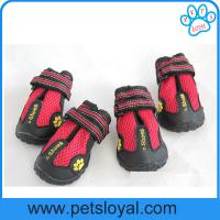Wholesale Breathable Pet Mesh Shoes for Waterproof Dog Boots Reflective Velcro China Factory from china suppliers