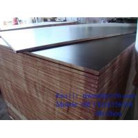 Wholesale Two Times Hot Press Shuttering Plywood Brown Film hardwood from china suppliers
