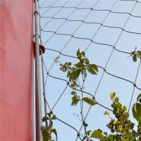 Wholesale Stainless Steel Cable Mesh As Plant Climbing from china suppliers