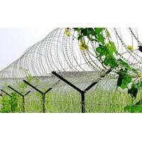 Wholesale Powder Coating Surface Stainless Steel Razor Wire , Razor Ribbon Wire BTO-10 15 22 from china suppliers