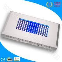 Wholesale 90W Aquarium LED Light for Coral Reef from china suppliers