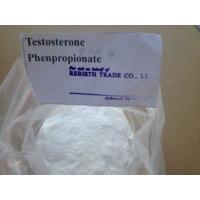 Wholesale Testolent 1255-49-8 Testosterone Phenylproprionate Raw steroid powder for Muscle Gain from china suppliers