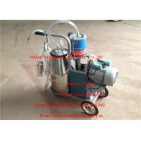 Quality Single Cow Portable Piston Pump Dairy Milk Machine With Copper Wire Motor for sale