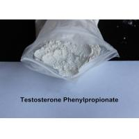Wholesale Natural Testosterone Phenylpropionate Men Muscle Gain Supplements For Body Building CAS 1255-49-8 from china suppliers