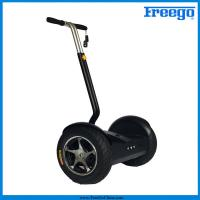 "Quality Black Electric Self Balance Scooter with 17"" wheel 1000 motor remote controller for  Amusements for sale"