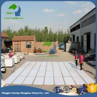 Wholesale Various Dimension Thickness 15mm/20mm HDPE Synthetic Ice Rink Sheet Panel Dasher Board Barrier Factory Export Price from china suppliers