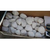 Wholesale Hot Products Snow White Pebble Stone,Tumbled White Pebble & Natural Pebble Stone from china suppliers