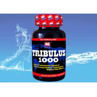 Buy cheap Tribulus 1000 --- Tribulus Terrestris Capsule for Natural Testosterone , Sports Nutrition Supplements for Bodybuilding from wholesalers