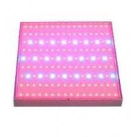 Wholesale 36W 220 / 240V Plexiglass 380nm UVA CE Aquarium Led Lighting Fixtures For Freshwater Tank from china suppliers