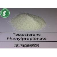 Wholesale Long Acting Steroids Testosterone Phenylpropionate for Muscle Building from china suppliers