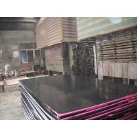 Wholesale High Strength Construction Black Film Faced Plywood , Finger-Jointed FFP from china suppliers