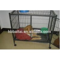 Wholesale hebei high quality pet  cage from china suppliers