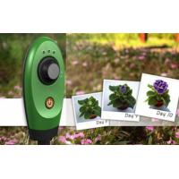 Wholesale Customized 8GB Memory Wildlife Garden Camera Field of View 49.5º from china suppliers