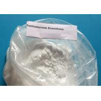 Wholesale High Quality White Powder Anabolic Steroid Powder Test Enan Testosterone Enanthate for Bodybuilding Fast Muscle from china suppliers