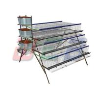 Wholesale A type semi automatic layer chicken cage from china suppliers