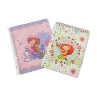 Wholesale A4, A4+, A5, A5+, A6 Customized OEM Paper cover Spiral Bound Notebook from china suppliers
