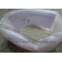 Wholesale Weight Loss Steroids T4 L-Thyroxine Sodium Salt For Muscle Growth from china suppliers