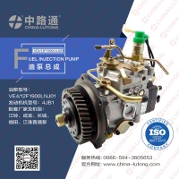 Wholesale bosch ve injection pump head rotor DP310 fuel injection pump head rotor from china suppliers