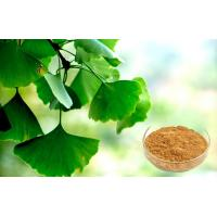 Wholesale USP40 Ginkgo Biloba Extract Low Ginkgolic Acid For Antioxidant Skin Care Kosher from china suppliers