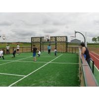 Wholesale Monofilament Outdoor Artificial Grass / fake grass lawns for football field from china suppliers