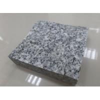 Wholesale Top Quality Chinese Ariston Grey Granite,Granite Tile,Granite Slab,Granite Cubes,Grey Paving from china suppliers