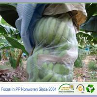 Wholesale Polypropylene nonwoven agriculture banana bag from china suppliers