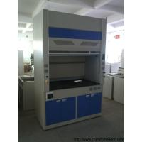 Wholesale Safety Lab Fume Hood Window Lift Freely With Hidden Fluorescent Lamp from china suppliers