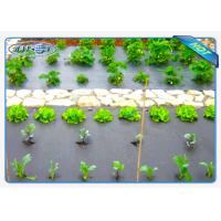 Wholesale Eco-friendly 30gsm Black Color Non woven weed control fabric For Vegetables from china suppliers