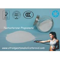 Wholesale Increase Muscle Mass Steroid Testosterone Enanthate Powder / Testosterone Propionate 57-85-2 from china suppliers