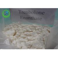 Wholesale Anabolic Trenbolone Fat Burning Steroid / Trenbolone Enanthate CAS 472-61-5 from china suppliers