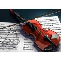 Wholesale NEW Humigic Super Acoustic Violin , Guitar , Cello Humidifier from china suppliers