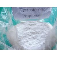 Wholesale 57-85-2 Anabolic Androgenic Steroids USP Muscle Growth Testosterone Propionate from china suppliers