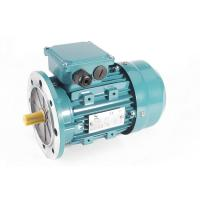 Wholesale MS IE1 High Quality Aluminium Construction 3 Phase Induction Motor with NSK Bearing from china suppliers