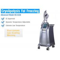 Wholesale Body Slimming / Shaping Cryolipolysis Fat Freezing Machine With Intelligent Temperature Control from china suppliers