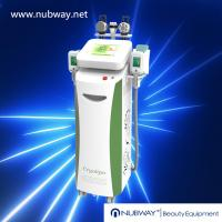 Wholesale Strong Cooling System Fat Freeze Cryotherapy Equipment Cryolipolysis Slimming Beauty from china suppliers