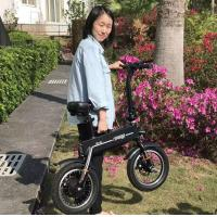Wholesale Adult 2 Wheels Foldable Electric Scooter , Outdoor Activity Electric Bicycle from china suppliers