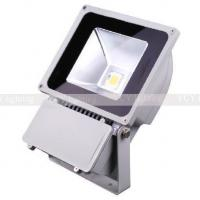 Wholesale 70W outdoor led lights IP65 supplier from china suppliers