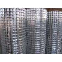 Wholesale 48 Inch x 100 Feet  2 Inch Opening Galvanized Welded Wire Mesh with 14 guage wire from china suppliers